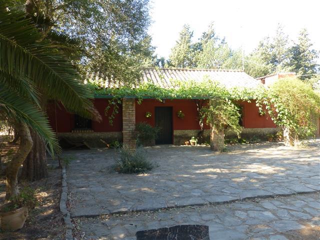 Finca El Alamo (2) (Small)