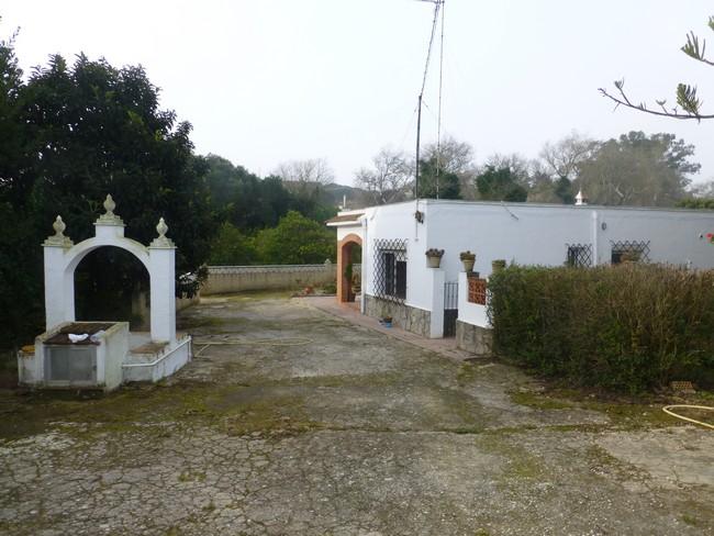 Casa Guerrero 43