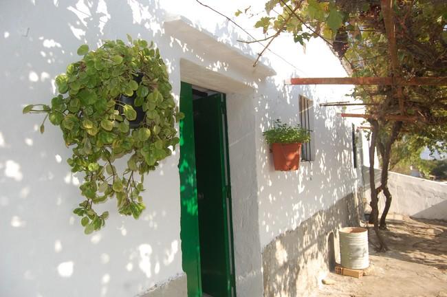 Casa Cuevas 21