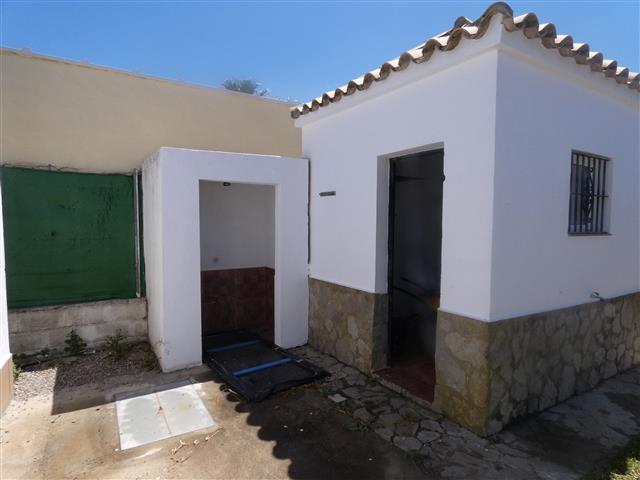 casa paloma (29) (Small)