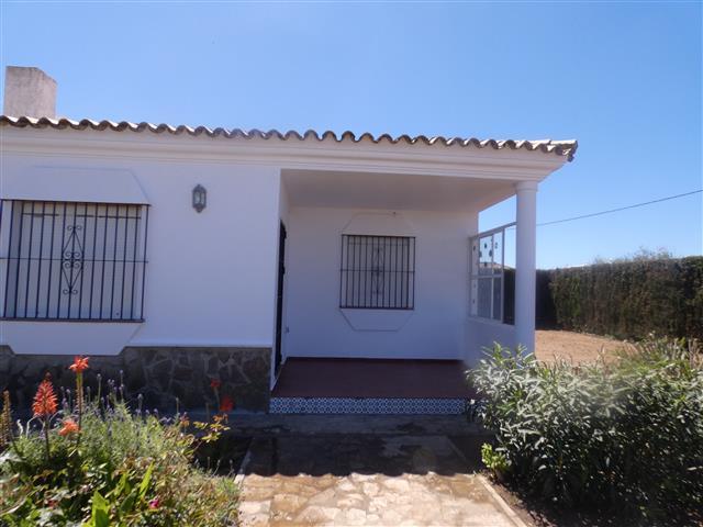 casa paloma (5) (Small)