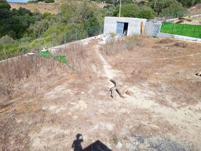 Casa Abejaruco 05
